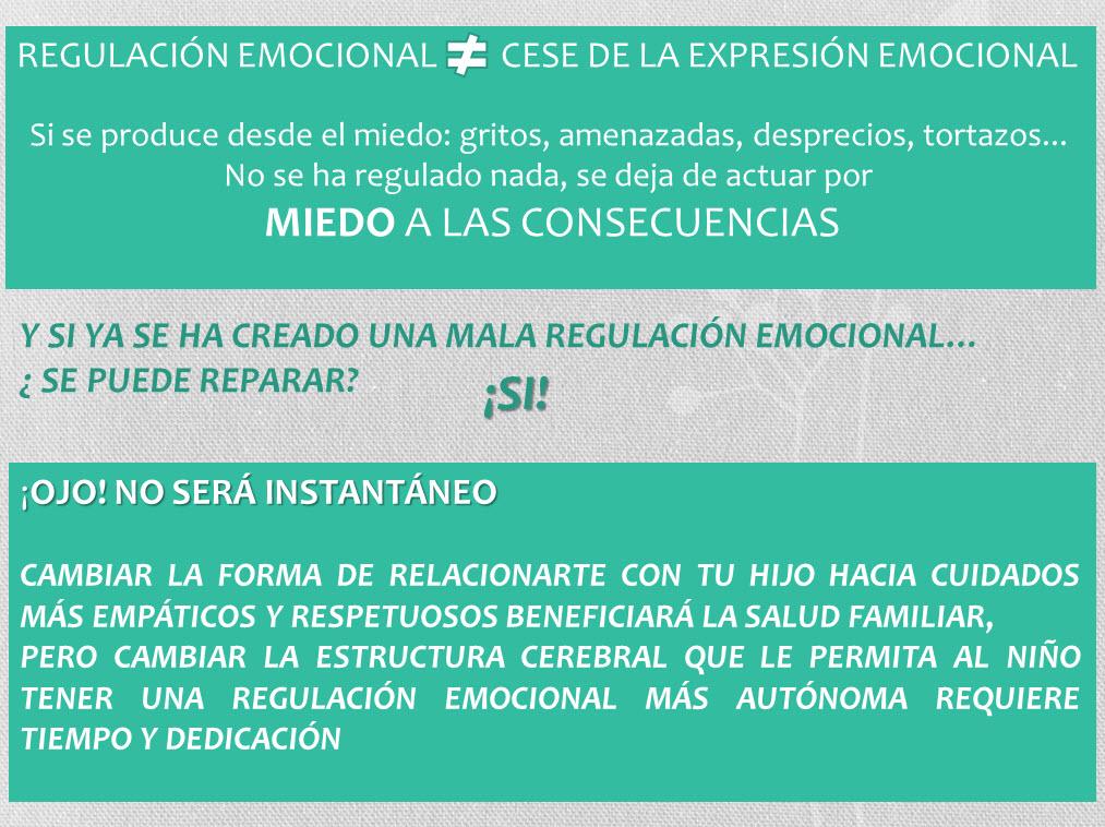 Salud 6